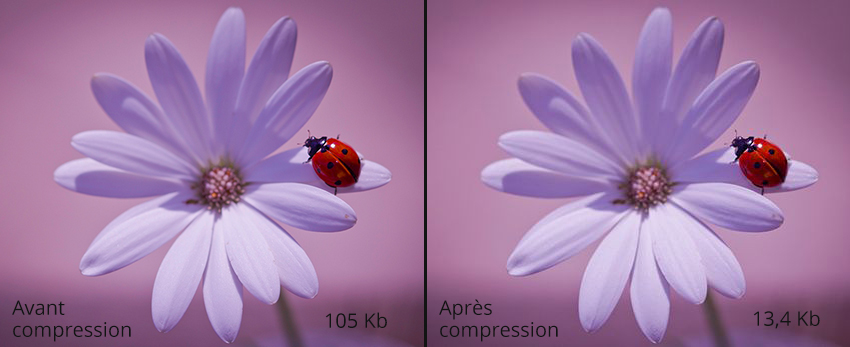 Compresser la qualité d'une image dans WordPress sans plugin ou Photoshop