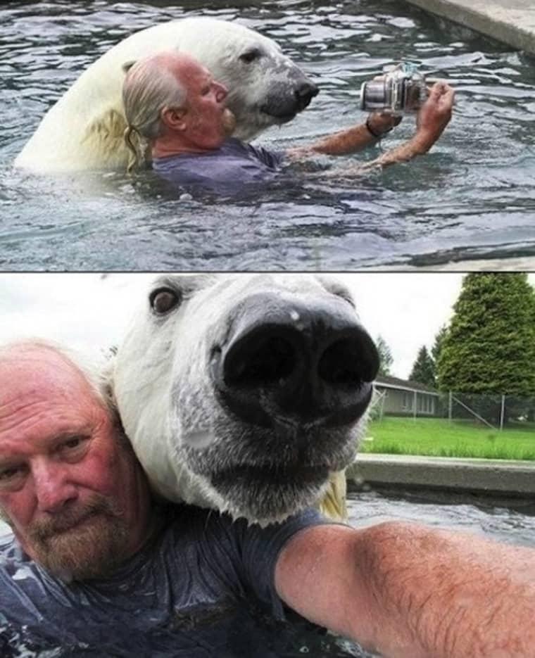 seflie-avec-un-ours-polaire