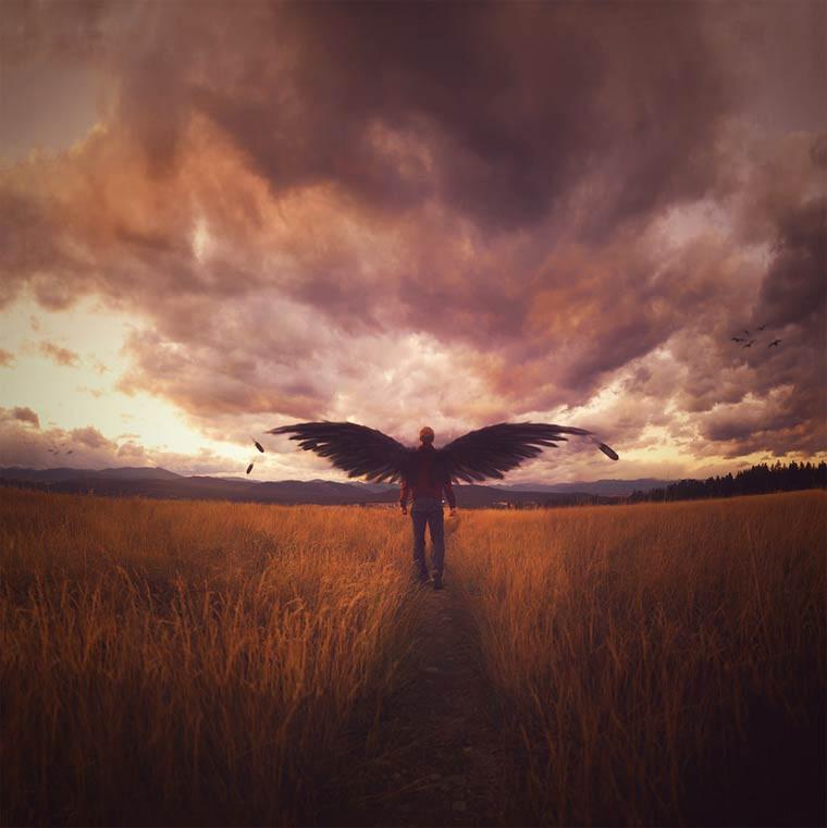 joel robison surrealiste ange