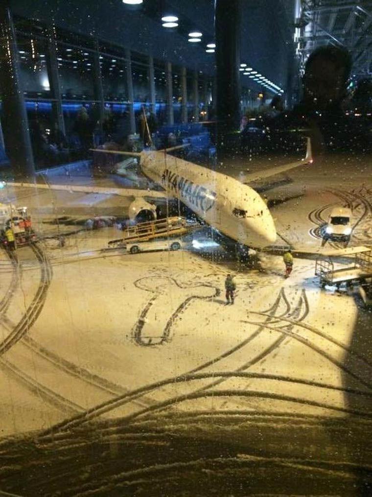 bite dans la neige