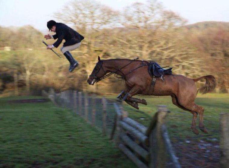 saut de cheval et jockey