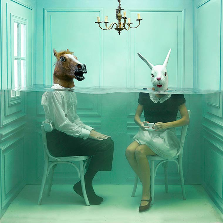 the unseen photographie cheval et lapin
