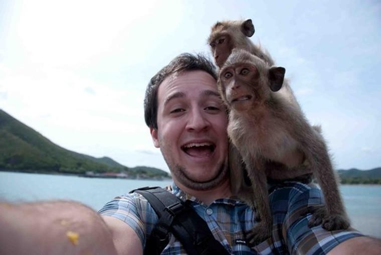 buzz des singes font un tour sur quelqun