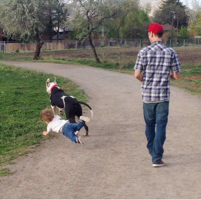 un enfant tombe a cause de son chien