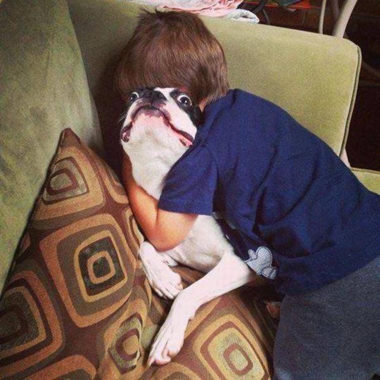 help me un chien en detresse