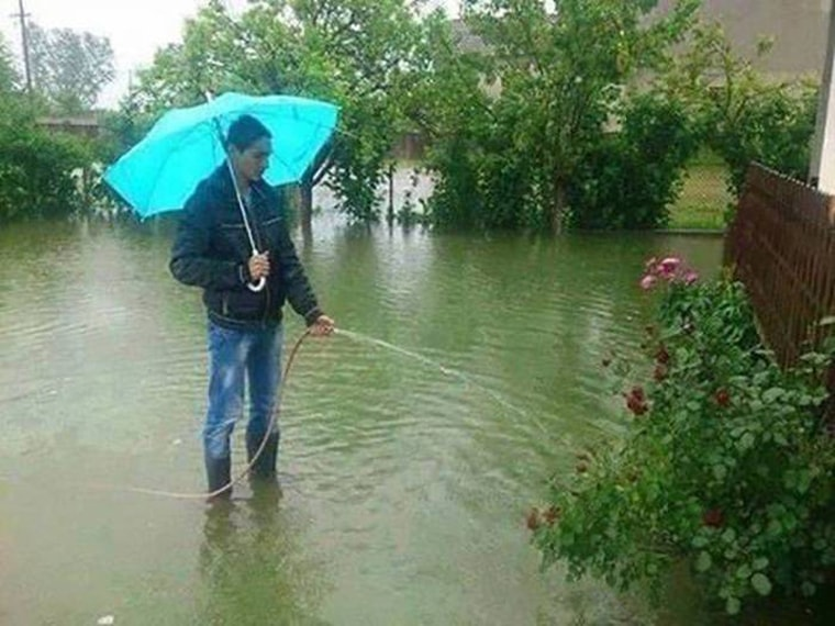 inondation il arrose ses plantes