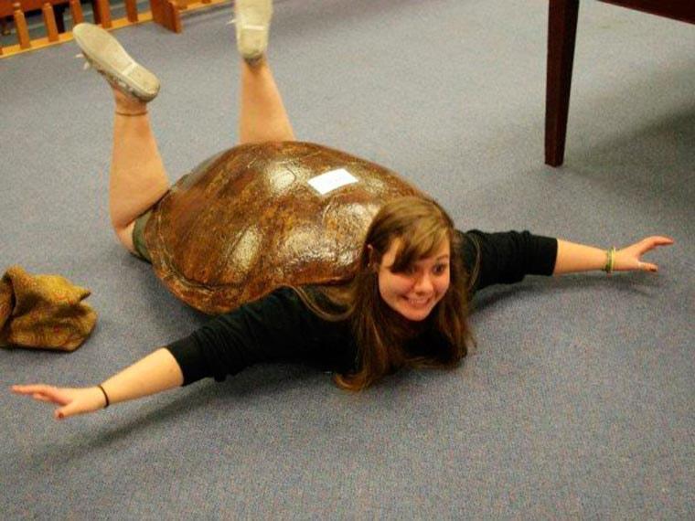 deguisement de tortue