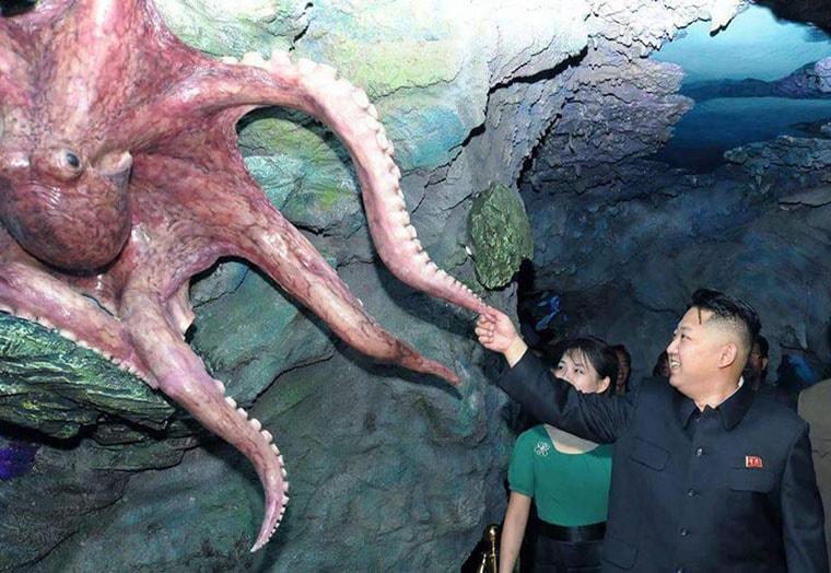 kim jong un salue par une pieuvre