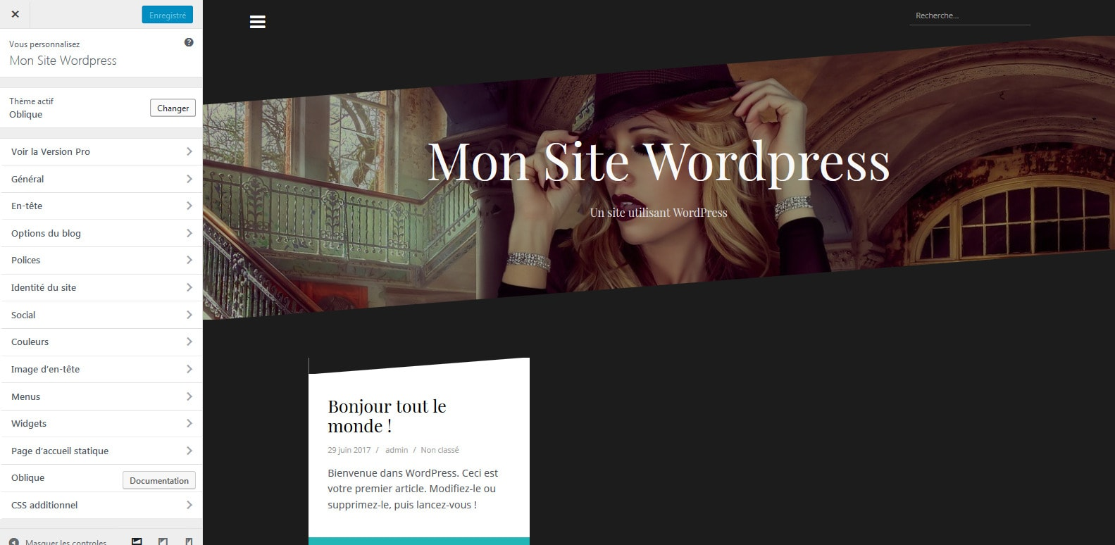 7-modifier-les-options-du-theme-wordpress