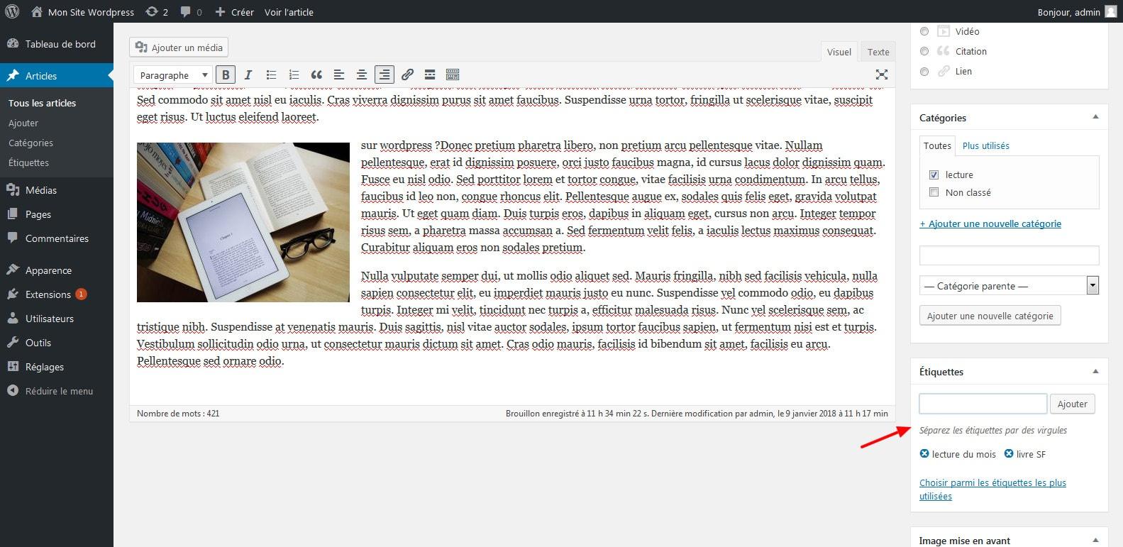 09 ajouter des etiquettes ou mots cles dans son article wordpress