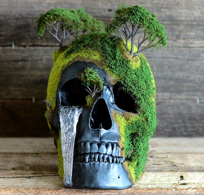 memento mori bonsais 1