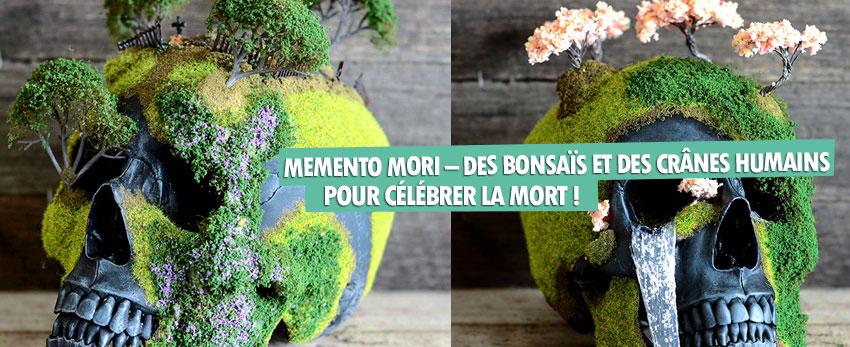 Memento Mori – des bonsaïs et des crânes humains pour célébrer la mort !