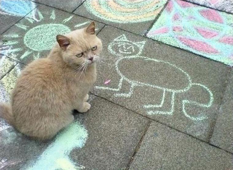 grumpy cat portrait craie