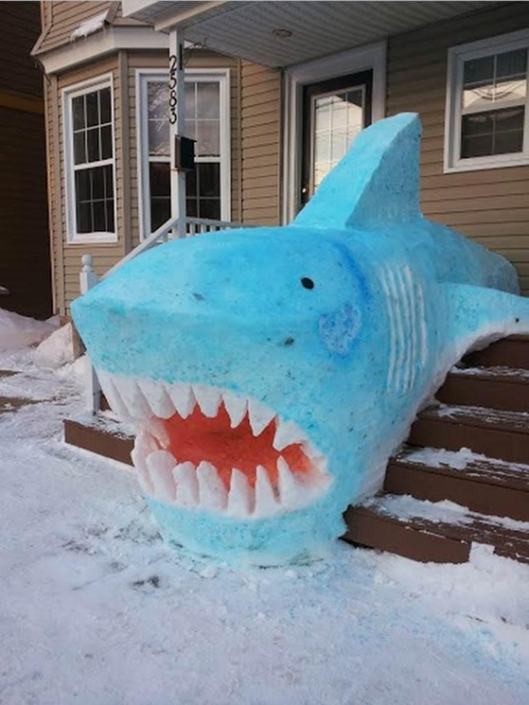 baby shark doo doo doo doo doo dooo