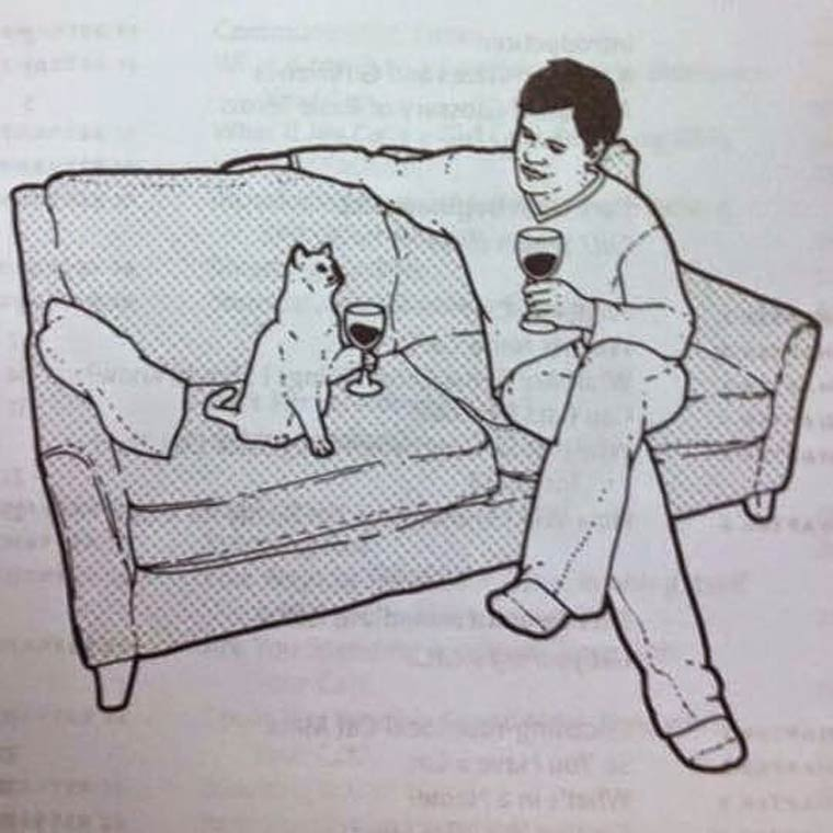 Drink apero entre un chat et son animal de compagnie