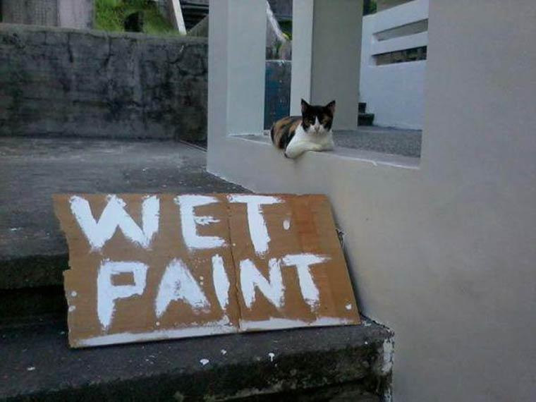 humour peinture fraiche