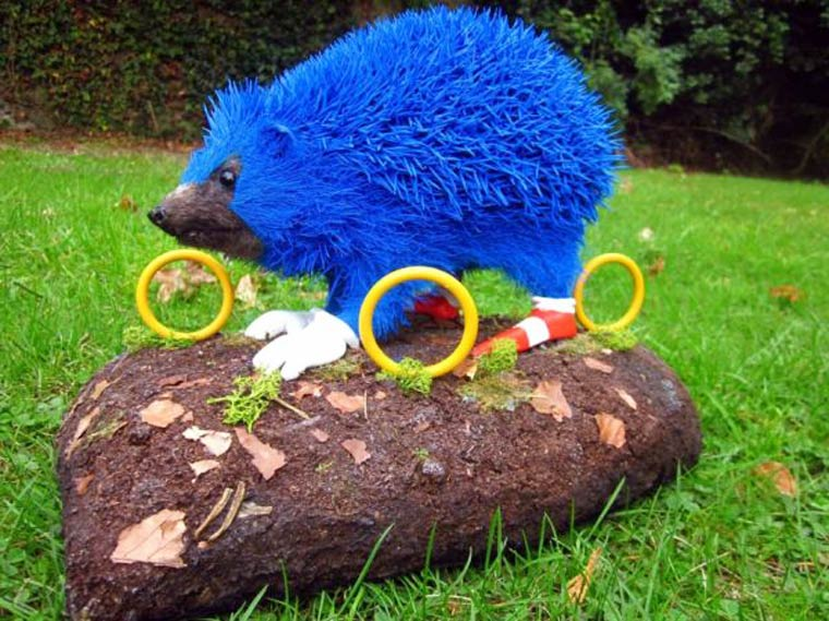 real life sonic l herisson