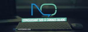 Consultant SEO à Cannes 06400